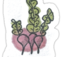 Radish Watercolor Sticker Sticker