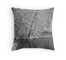 River Edge Snow Throw Pillow
