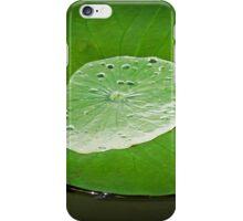 Moment of Zen iPhone Case/Skin