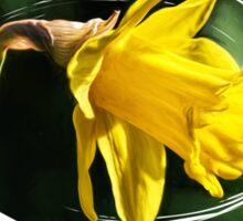 Daffodil ~ Impressions Sticker