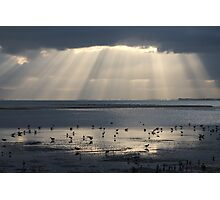 The God of Birdwatching Photographic Print