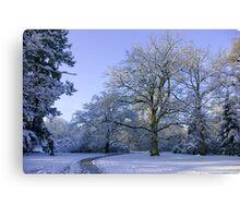Path through Winter Wonderland Canvas Print
