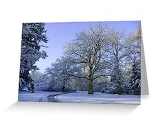 Path through Winter Wonderland Greeting Card
