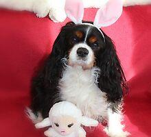 Charlie Girl Posing for Easter by AnnDixon