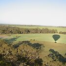 ~Hot Air Balloon~ by Debra LINKEVICS
