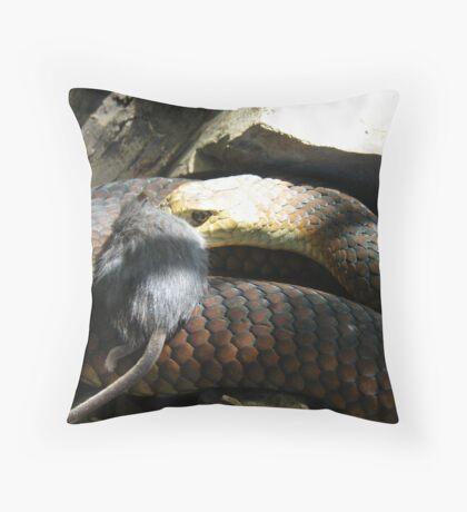 King Island Copperhead Throw Pillow
