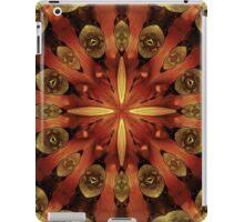 Steampunk Kaleidoscope 3 iPad Case/Skin