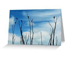 Songbird Silhouette Greeting Card