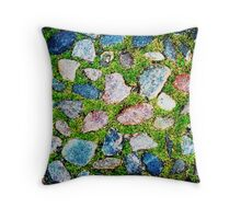 the wandering toe Throw Pillow