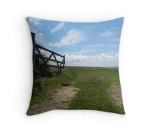 Open gate into Devon field  Throw Pillow