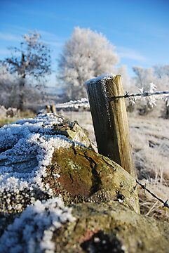 frozen  post by dinghysailor1