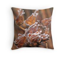 Seedpods in Frost Throw Pillow