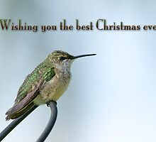 Wishing you the best Christmas ever! by Bonnie T.  Barry