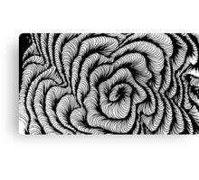 Vector swirl Canvas Print