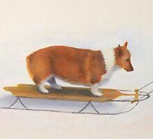 Welsh corgi sledding by PhyllisGAndrews