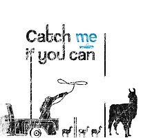 Arizona Llama drama - Catch me if you can by kramprusz
