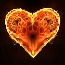 The Fire of Love by Heather Payson