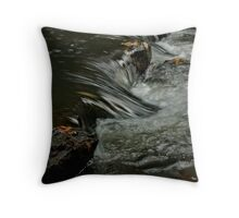 Turtletown Creek East Falls Downstream Throw Pillow