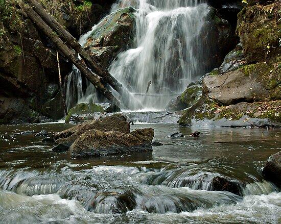 Turtletown Creek East Falls III by John O'Keefe-Odom