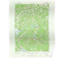 Maine USGS Historical Map Stetson 306799 1955 62500 Poster