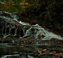 Turtletown Creek West Falls I by John O'Keefe-Odom