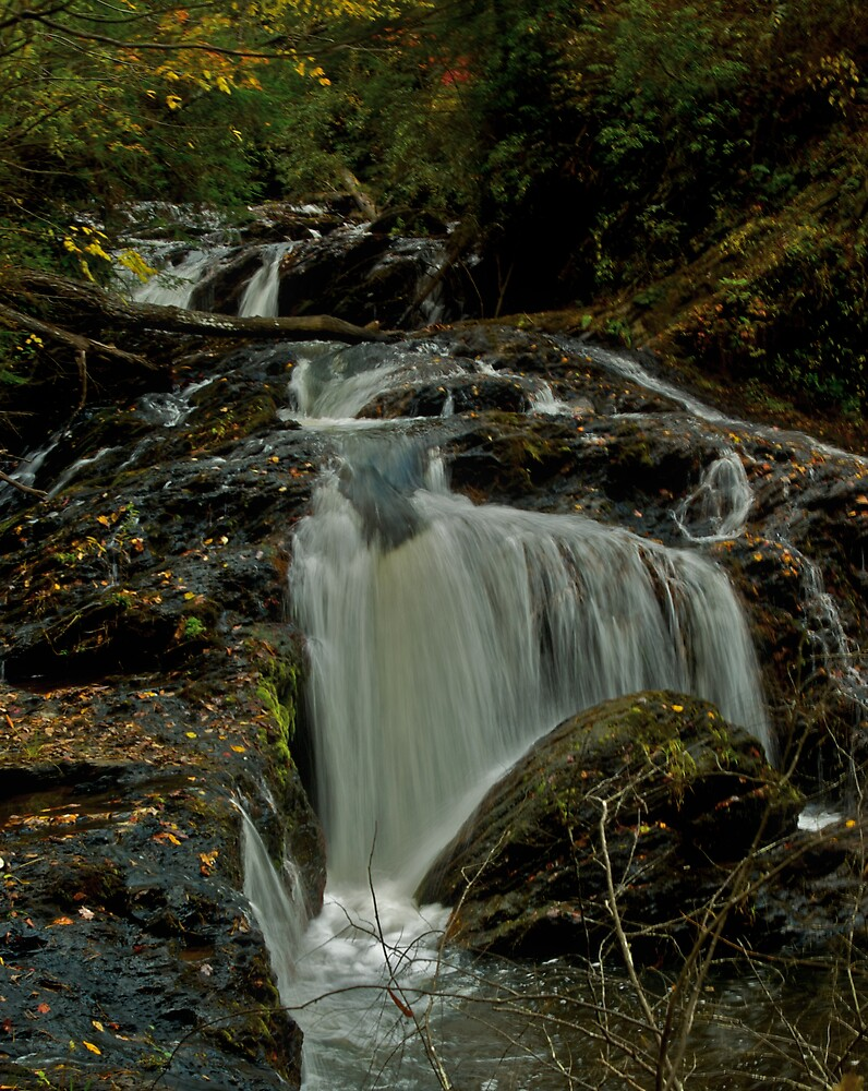 Turtletown Creek West Falls II by John O'Keefe-Odom