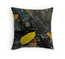 Leaves in Waterfall, Turtletown Creek West Falls Throw Pillow