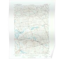 Maine USGS Historical Map Stetson 306800 1955 62500 Poster