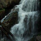 Turtletown Creek East Falls IV by John O'Keefe-Odom