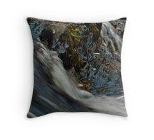 Turtletown Creek West Falls IV Throw Pillow