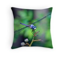 Dialogue With a Dragonfly Throw Pillow