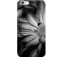 00392 iPhone Case/Skin