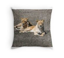 Two Lionesses Throw Pillow