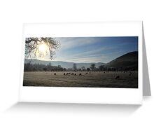 Winter Grazing Peebles Greeting Card