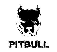 pit bull - pitbull terrier Photographic Print
