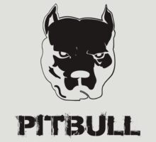 pit bull - pitbull terrier by hottehue