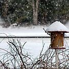 Bird House in the Snow by WeeZie