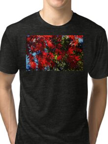 Maple In Bloom Tri-blend T-Shirt
