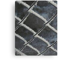 hoarfrost on chainlink Canvas Print