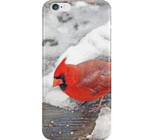 Yes, Somebody Fed Me! iPhone Case/Skin
