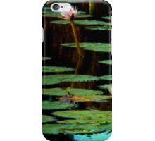 Your Pad or Mine iPhone Case/Skin