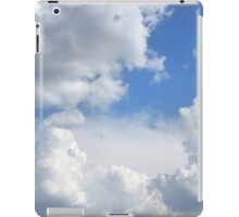 Froth iPad Case/Skin