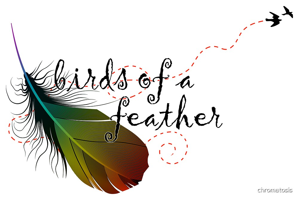 birds of a feather by chromatosis