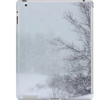And the Snow Came Tumbling Down & Down iPad Case/Skin