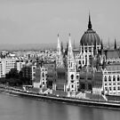 Hungarian Parliament by Paula Bielnicka