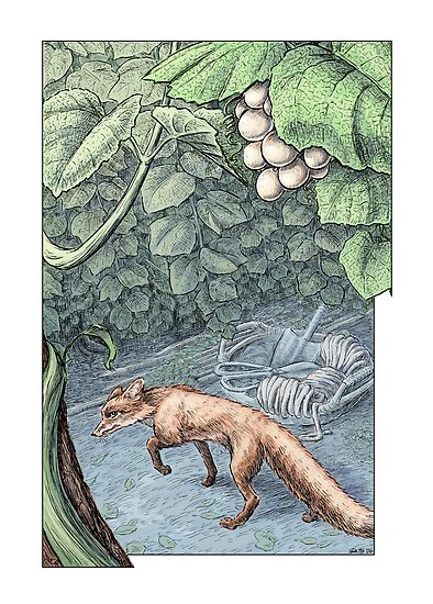 The Fox and the Grapes by Stephanie Smith