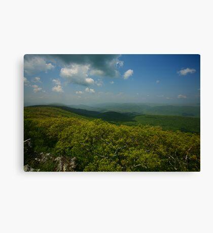 Green Hills of Virginia Canvas Print