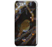 Icy Perch iPhone Case/Skin