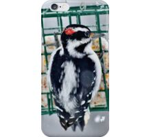 Hairy Woodpecker in the Storm iPhone Case/Skin