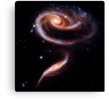 A Rose Made Of Galaxies Canvas Print